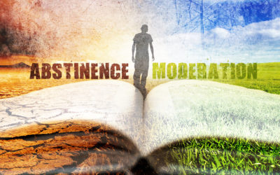 Abstinence from Alcohol or a Life of Addiction! Are These my only Two Options?