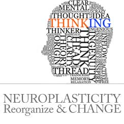Psychological Addiction and Neuroplasticity on Addiction